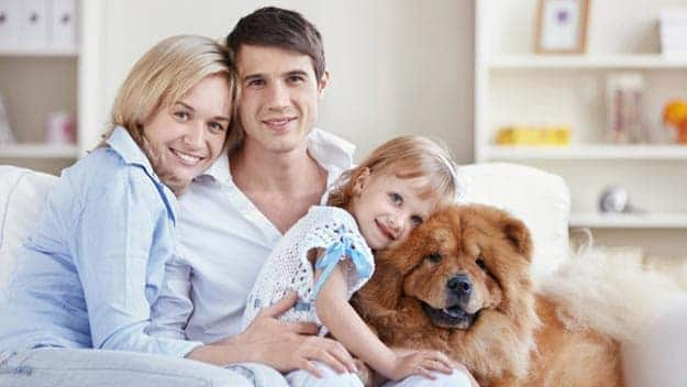 Wills & Trusts dog-young-family Direct Wills Banbury